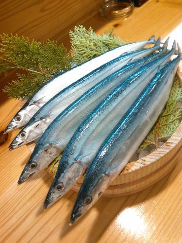 秋刀魚の季節に…